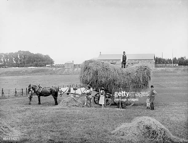 Kings Grove Maidenhead Berkshire c1890 A group piling hay onto a cart using pitchforks with a train stopped at the Great Western Railway station in...