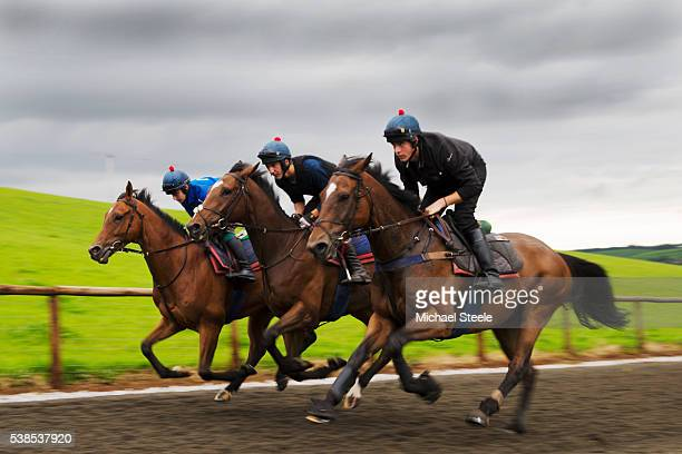 Kings Theatre ridden by Sean Houlihan Bacchanel ridden by Sebastien Boelens and If in Doubt ridden by Martin Daniel sprint on the polytrack at...