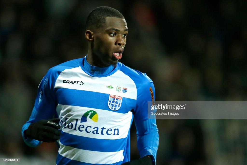 Heracles Almelo v PEC Zwolle - Dutch Eredivisie : News Photo