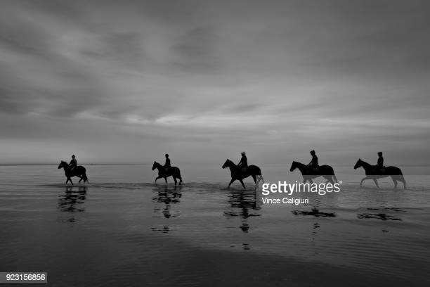 Kinky Boom and Oohood are seen at Altona Beach with other Tony McEvoy stable runners during a trackwork session at Altona Beach on February 23 2018...