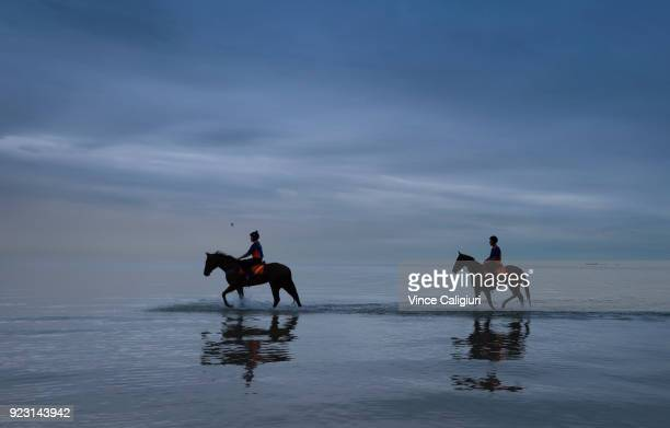 Kinky Boom and Oohood from the Tony McEvoy stable are seen at Altona Beach during a trackwork session at Altona Beach on February 23 2018 in...