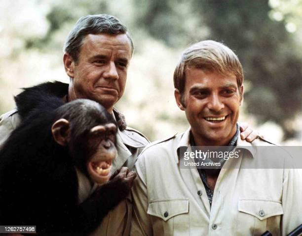 Kino. Daktari, Daktari, Daktari, Daktari, Marshall Thompson, Ross Hagen, 1966.