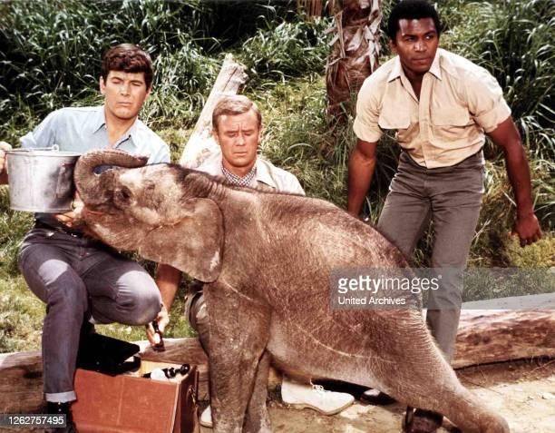 Kino. Daktari, Daktari, Daktari, Daktari, Yale Summers, Marshall Thompson, Hari Rhodes, 1966.