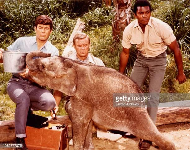 Kino. Daktari, USA, 1966 - TV-Serie, Fernsehserie, Regie: Art Arthur, Ivan Tors, Darsteller: Marshall Thompson, Hari Rhodes, Yale Summers.