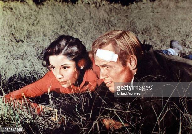 Kino Der Sonne entgegen aka Run for the Sun USA 1958 Regie Roy Boulting Darsteller Richard Widmark Trevor Howard Jane Greer