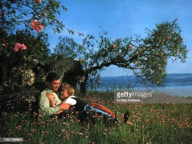 Kino. Die Fischerin vom Bodensee, D Regie: Harald Reinl, GERHARD RIEDMANN, MARIANNE HOLD, Stichwort: Paar, Natur, Blüten, Wiese.