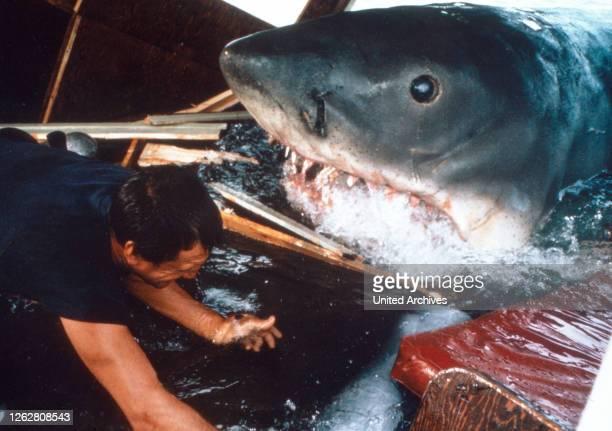 Der weiße Hai, USA Regie: Steven Spielberg, Szenenfoto mit Roy Scheider .