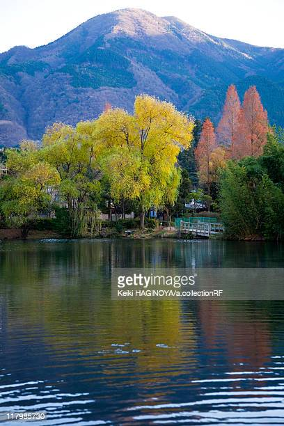 kinrin lake in autumn - 大分県 ストックフォトと画像