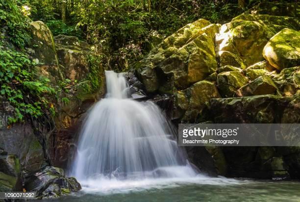 kionsom waterfall, kota kinabalu, sabah - island of borneo stock pictures, royalty-free photos & images