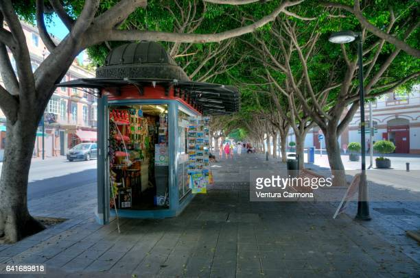 kiosk on the paseo de reding street in málaga, spain - magazine rack stock photos and pictures