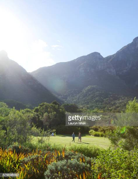 kirstenbosch botanical gardens with table mountain as a backdrop - lauryn ishak stock pictures, royalty-free photos & images