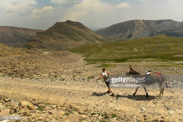 Kirt Courkamp of Pine leads his donkey Mary Margaret down from the summit of Mosquito Pass as they take part in the 70th annual World Championship...