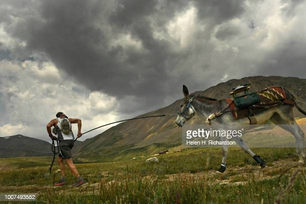 Kirt Courkamp of Pine leads his donkey Mary Margaret towards the summit of Mosquito Pass as they take part in the 70th annual World Championship Pack...