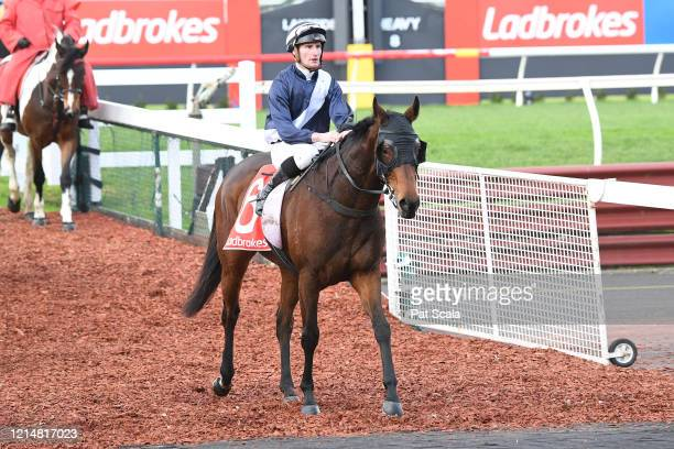 Kiss And Cry ridden by Daniel Stackhouse returns to the mounting yard after winning the Ladbrokes Same Race Multi Handicap at Ladbrokes Park Lakeside...