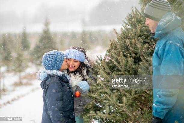 kiss on the cheek - christmas tree farm stock pictures, royalty-free photos & images