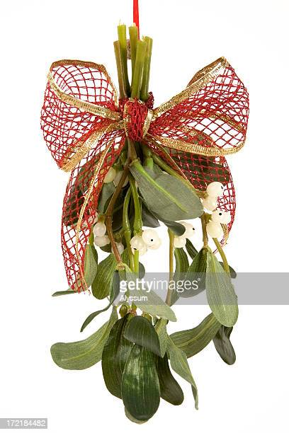 kiss the season - what color are the berries of the mistletoe plant stock pictures, royalty-free photos & images