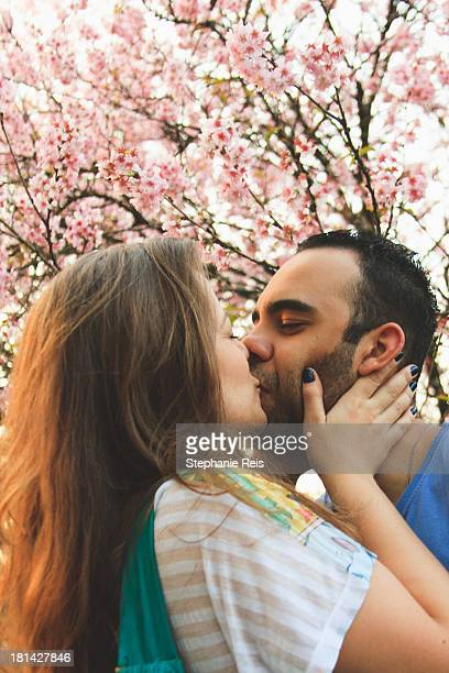 kissing couple in front a cherry tree - cherry kiss photos et images de collection
