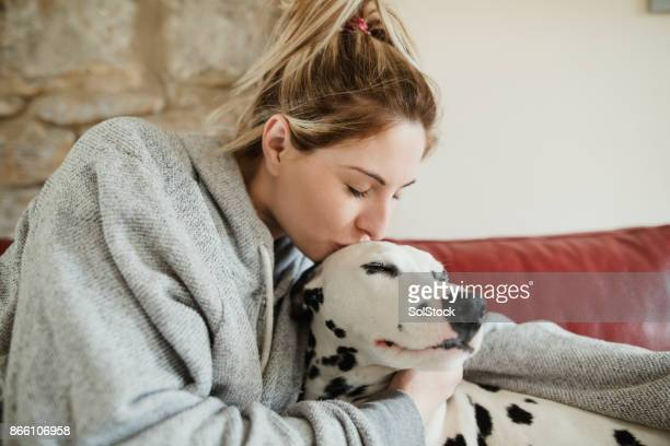 kissing pet dalmatian dog - pet owner stock pictures, royalty-free photos & images