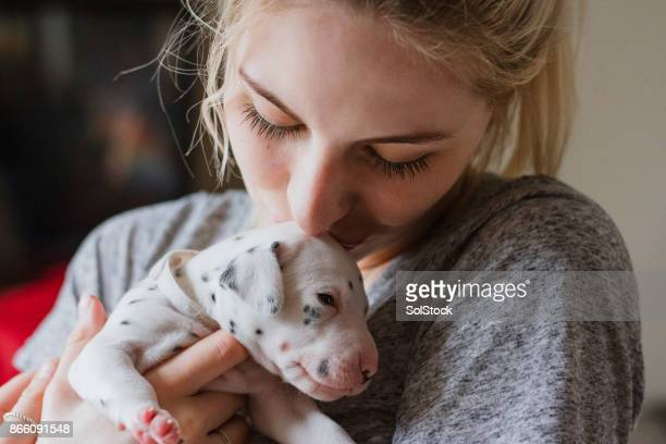 Kissing Pet Dalmatian Puppy