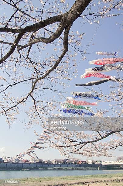 kitakami- kitakamitennshouchi - 鯉のぼり ストックフォトと画像