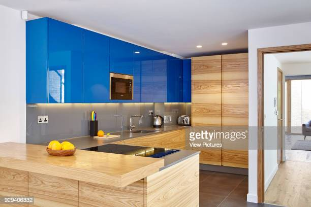Kitchen area with blue cupboards and fruit Peel Place London United Kingdom Architect Dexter Moren Associates 2016
