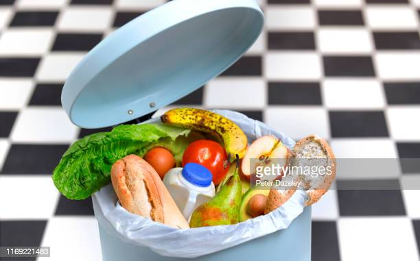 kitchen bin with out of date food - lixo imagens e fotografias de stock