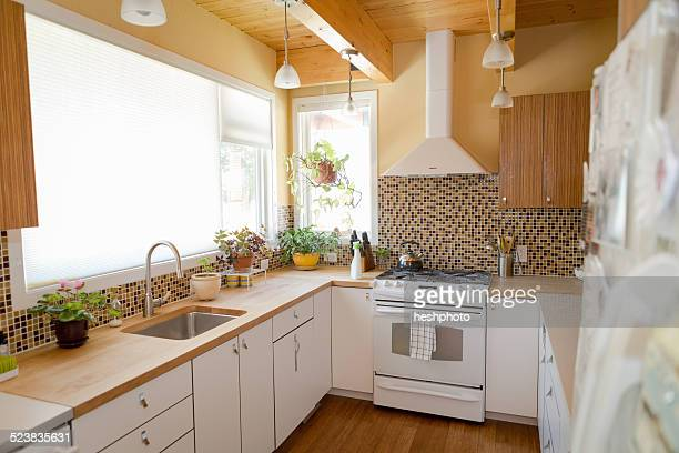 kitchen cleaned with green cleaning products - heshphoto stock-fotos und bilder