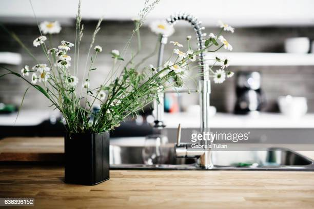 Kitchen Counter in summer.