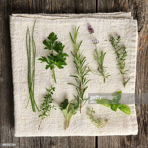 Kitchen herbs still life