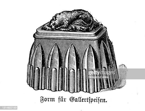 Kitchen implement, Form of gelatinous food, historical kitchen appliances, Betty Gleim's cookbook, 1847 / Form für Gallertspeisen, historische...