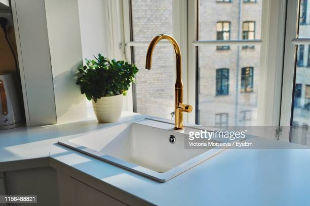 kitchen sink and potted plant by window at home - 水周り ストックフォトと画像