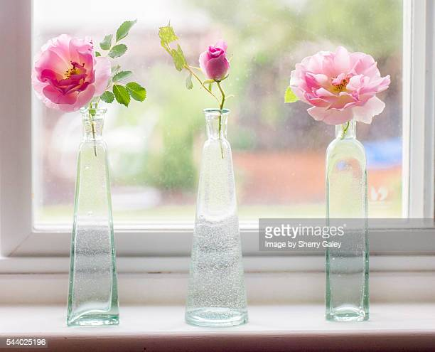 Kitchen window sill vignette with pink roses in bootes