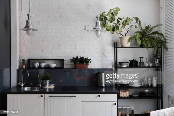 kitchen with tidy counter and shelves - neat stock pictures, royalty-free photos & images