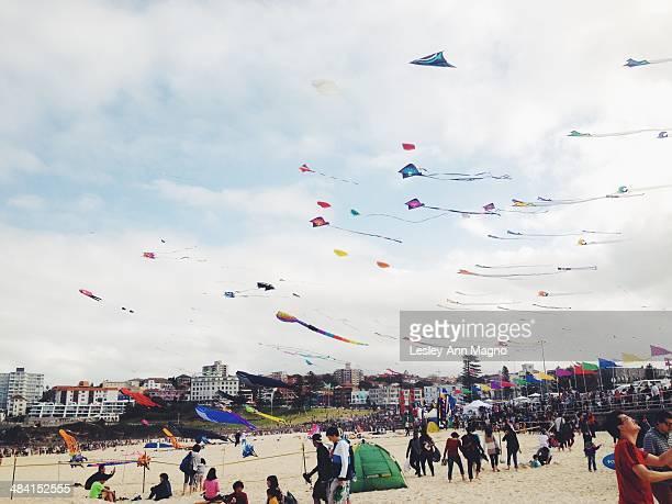 Kite flying in Bondi Australia