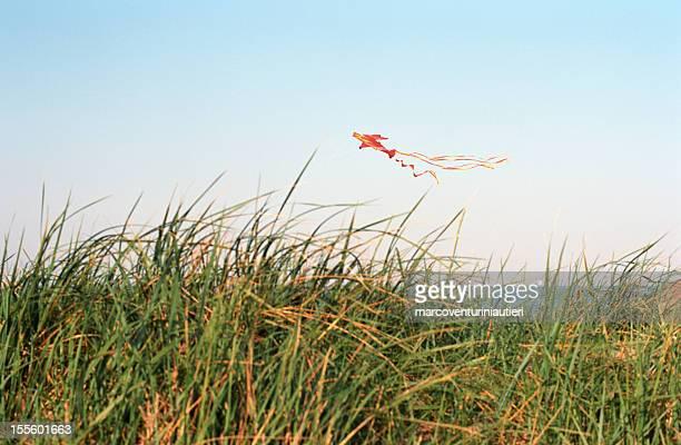Drachensteigen über sand dunes
