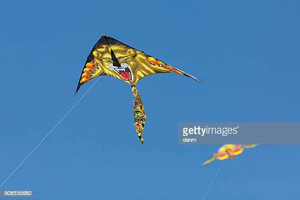 Kite in the sky with lion on it