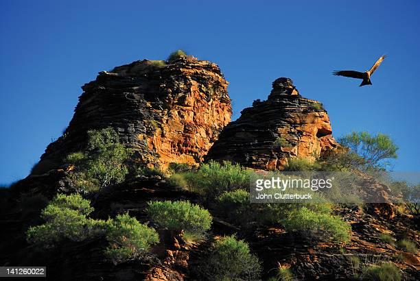 Kiter Hawk flying over Kimberleys