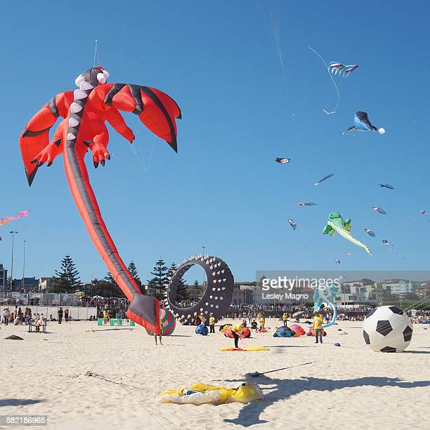 Kites at festival of the winds - red dragon kite