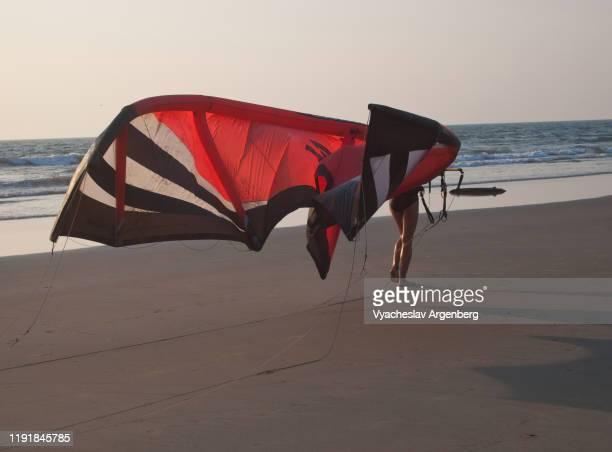 kites at mandrem beach in goa - argenberg ストックフォトと画像