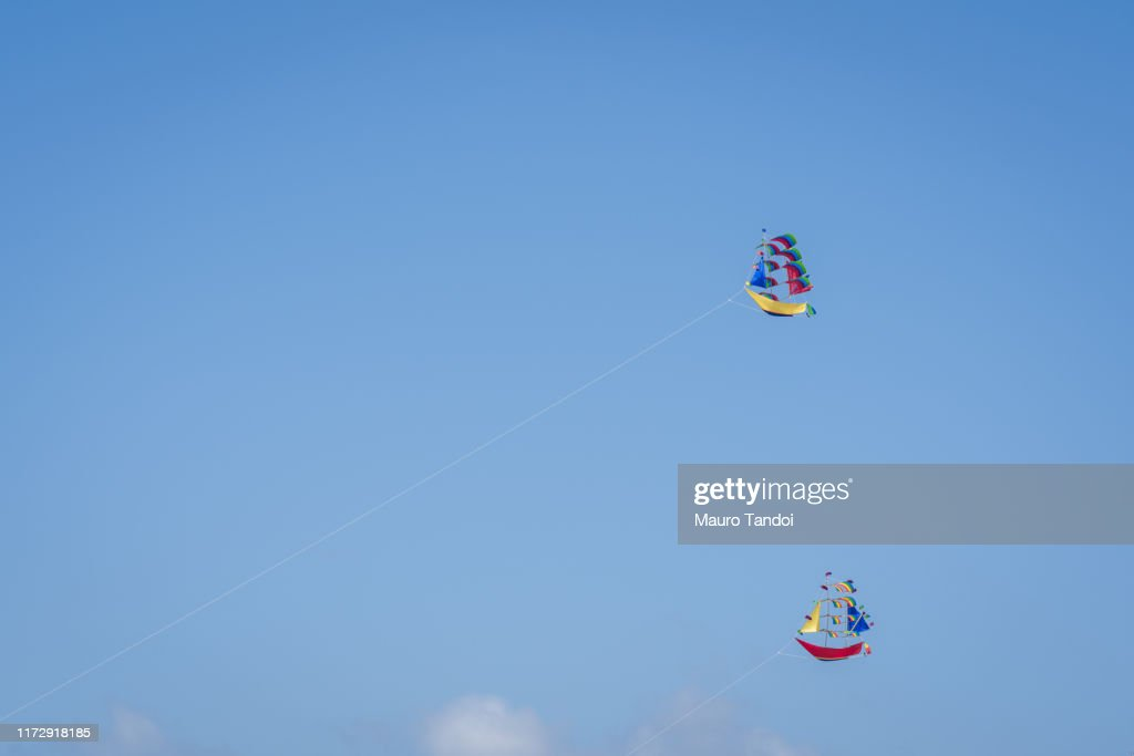 Kites in the clear sky of Bali : Stock Photo