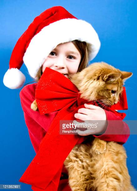 Chaton pour Noël