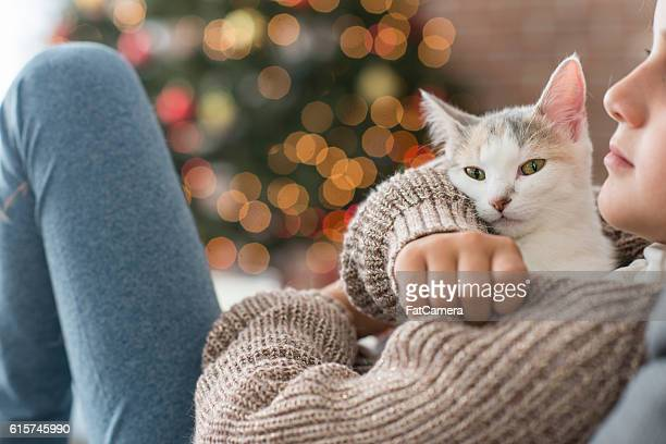 Kitten for Christmas