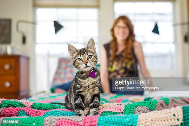 Kitten Sitting on Bed with Woman in Background
