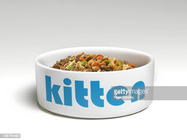 Kitten's feeding bowl with food