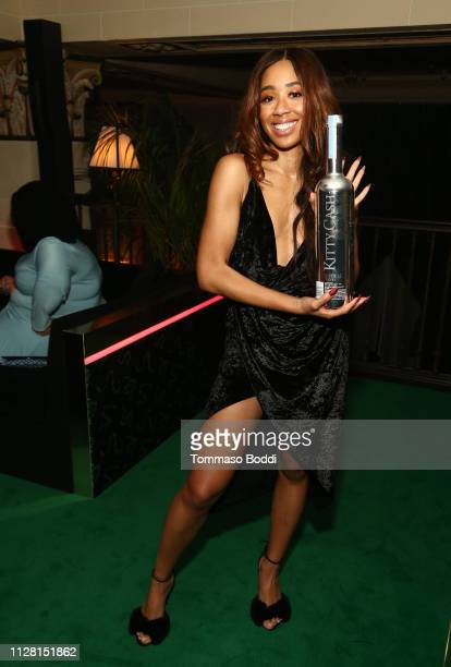 Kitty Cash attends Belvedere Vodka Celebrates Warner Music Group's 61st Annual Grammy Award Nominees at the PreAward Show Party at the NoMad Hotel In...