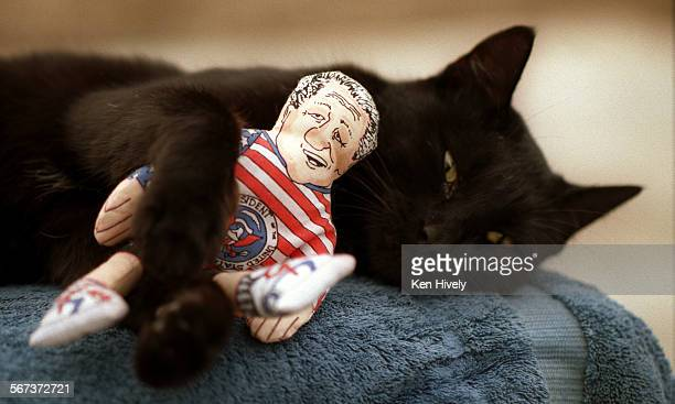 Kitty Hoots are a catnip–filled kitty toys that are in the likenesses of Bill Clinton and Ross Perot Photo of cat named Jackamo with Kitty Hoots Bill...