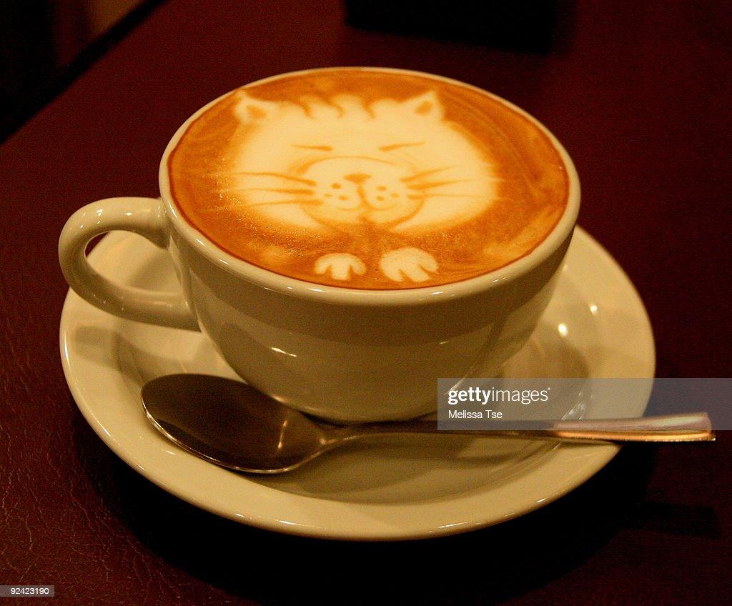 Kitty Latte Art : Stock Photo
