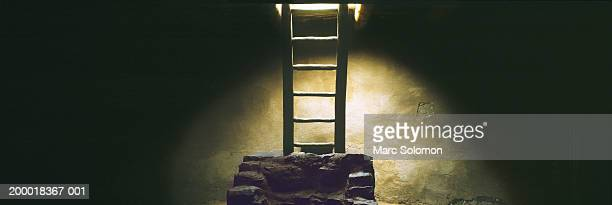 Kiva with ladder leading to entrance