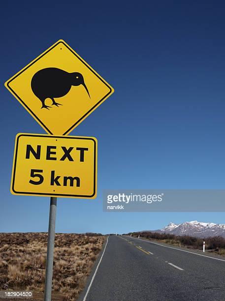 Kiwi Bird on the Road