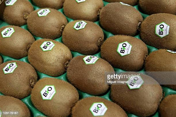 Kiwi fruits with a sticker reading 'Organic' are pictured during the world organic trade fair BioFach 2011on February 16 2011 in Nuremberg Germany...